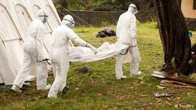 WHO: Ebola outbreak 'international public health emergency' | News ... | Research Capacity-Building in Africa | Scoop.it
