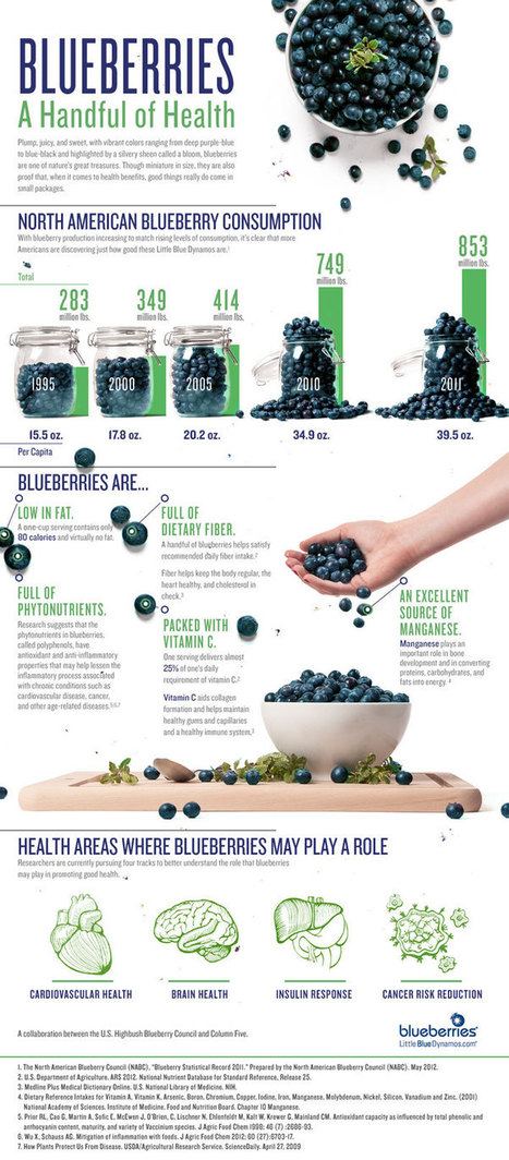 The blue superfruit you should eat every day. | Nutrition & Health | Scoop.it