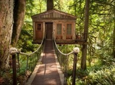 Living in a Tree house village in Italy | Italia Mia | Scoop.it