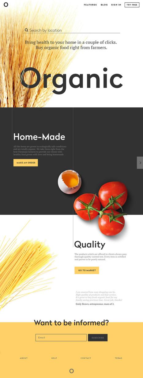 Landing Page. Direct Flight to High Conversion | El Mundo del Diseño Gráfico | Scoop.it