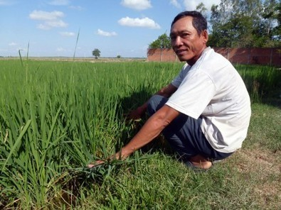 Project Aims to Make Subsistence Farms Profitable - The Cambodia Daily (subscription)   Rural Development Southeast Asia   Scoop.it