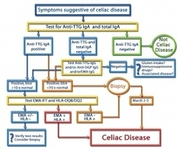 New Guidelines for the Diagnosis of Celiac Disease « ORGENTEC ... | Living Gluten free | Scoop.it