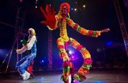 Colombian bill bans use of wild animals in circuses - Politics Balla | Politics Daily News | Scoop.it