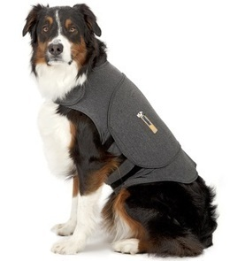 Thundershirt For Dog Anxiety | Thundershirt.com | Dog Grooming | Scoop.it