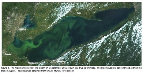 Lake Erie's Toxic Algae Breaks Records in 2015 | Rob Moore's Blog | Switchboard, from NRDC | Ecosystems at Risk | Scoop.it