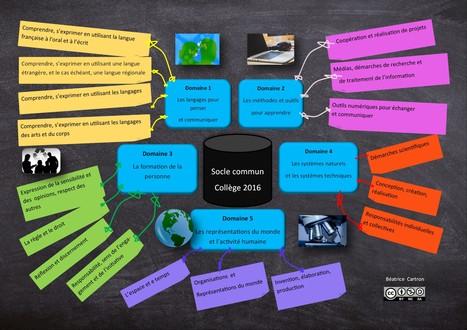 Socle commun collège 2016: une carte mentale | TICE et italien - AU FIL DU NET | Scoop.it
