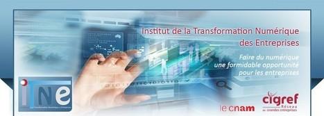Institut de la Transformation Numérique | Faire du numérique une opportunité pour les dirigeants d'entreprises ! | Digital Homeostasis | Scoop.it