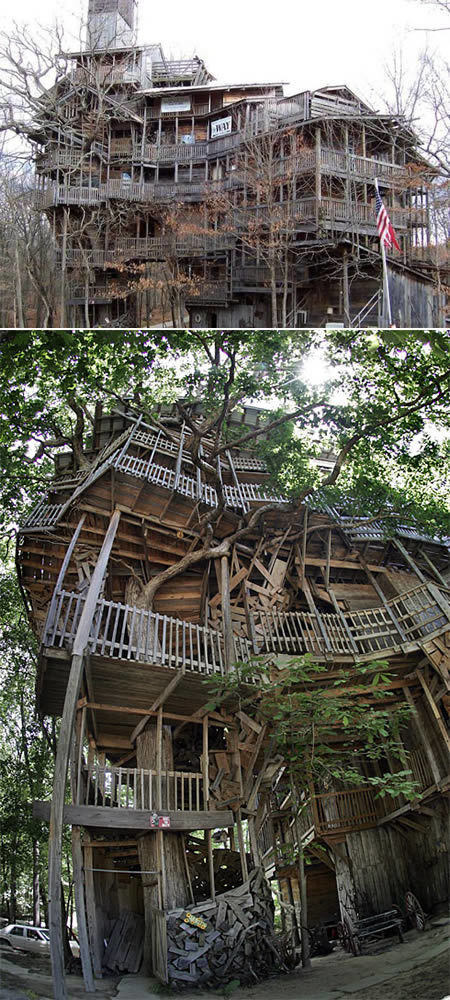 Another 10 Truly Amazing Tree Houses - Oddee.com | Xposed | Scoop.it