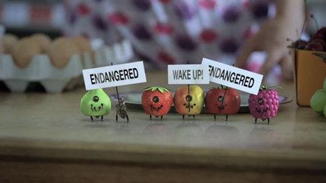 Greenbees : campagne pub Greenpeace pour sauver les abeilles   Publicité - Advertising   Scoop.it