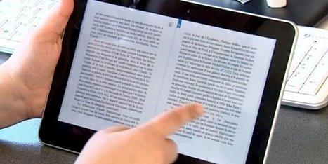 Livre numérique : l'heure du TEA a sonné pour la librairie Decitre à Lyon | Culturebox | Le numérique en bib | Scoop.it
