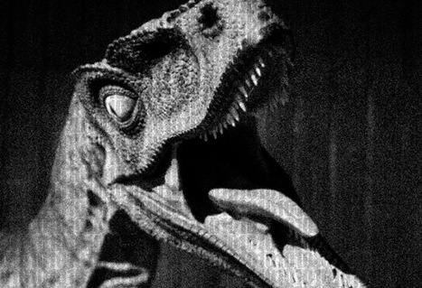 On achève bien les dinosaures   Veille de Black Eco   Scoop.it