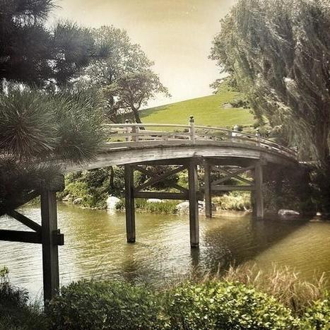 Twitter / haucstro: Japanese bridge at the Chicago ... | Japanese Gardens | Scoop.it