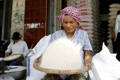 World Bank Estimates Small Drop in Economic Growth | Cambodia | Scoop.it