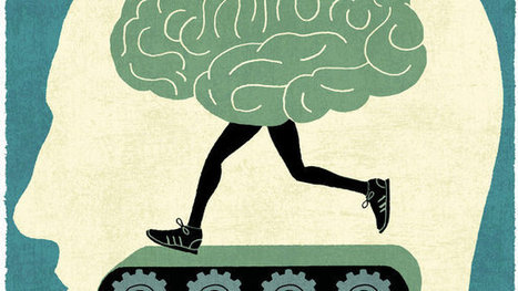Do Brain Workouts Work? Science Isn't Sure | Brain Imaging and Neuroscience: The Good, The Bad, & The Ugly | Scoop.it