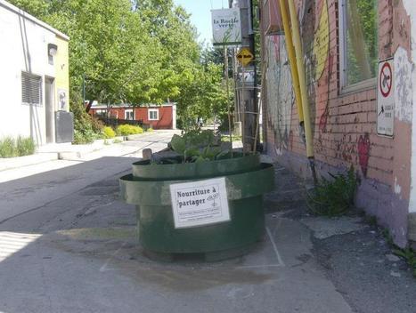 Quatre idées pour refaire de Montréal une ville nourricière | Agriculture urbaine et rooftop | Scoop.it