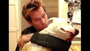 """Celebrities You Didn't Know Were Pit Bull Lovers 