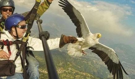 NationalEcoTourism.com - National Eco Tourism Center | Eco Tourism In Nepal | Scoop.it