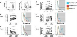 Exhaustion of Activated CD8 T Cells Predicts Disease Progression in Primary HIV-1 Infection | Immune-Monitoring | Scoop.it
