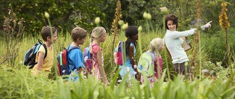 Outdoors Educational Resources for Children | research interest | Scoop.it