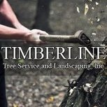 Timberline Tree and Landscaping | Tree Trimming Marietta | Scoop.it