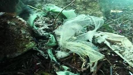 Vertederos en el mar en «La noche temática» | Contaminación en Oceanos | Scoop.it