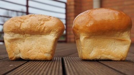 This is what climate change will do to your loaf of bread | Climate change challenges | Scoop.it