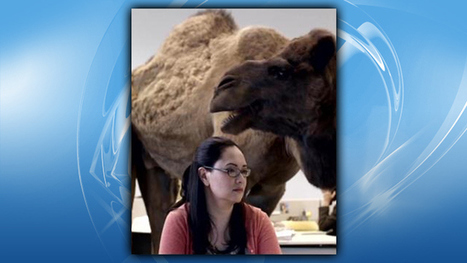 Conn. School Administrators Say Students Using 'Hump Day' Phrase Are ... - CBS Local | Technology in Schools | Scoop.it