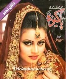 Monthly Pakeeza Digest July 2014 urdu PDF Books Read Online | Pak, Indian Dramas | Scoop.it