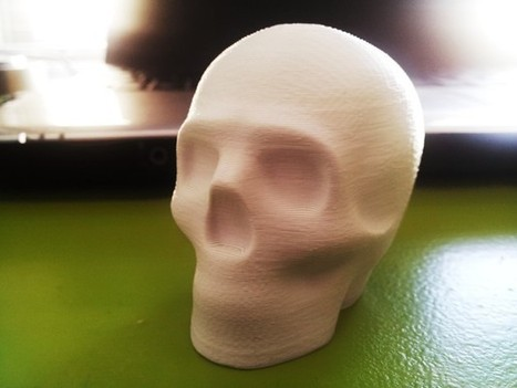 Lisa the printable skull by macouno - Thingiverse | Product Design | Scoop.it