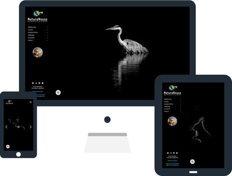 Refonte du site internet du photographe animalier Emmanuel Tardy - Actualités - evolutiveWeb.com | Actus de l'agence, infos et conseils en e-communication et entrepreunariat | Scoop.it