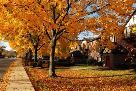 Three Reasons Why Buying a Home in the Fall Is a Good Idea   Real Estate Resources and Tips in Charleston, SC   Scoop.it