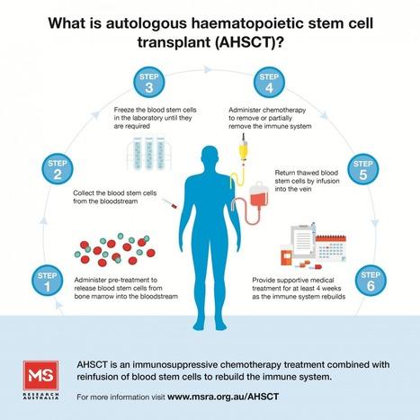Autologous Hematopoietic Stem Cell Transplant (HCST) | Healthcare: reloaded... | Scoop.it