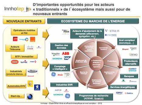 Les Smart grids conçus pour accompagner une transition énergétique inédite | Développement durable et efficacité énergétique | Scoop.it