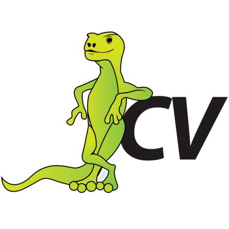 Why using a CV Template, CV Builder or CV Examples a bad idea?   Get A Job, Start A Career   Scoop.it
