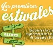 Les Premières Estivales de PIWI France : Venez à la découverte la plus large expérimentation européenne de cépages résistants | Winemak-in | Scoop.it