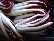 Meet the Italian Farm Growing Some of the Best Radicchio in the World | Italia Mia | Scoop.it