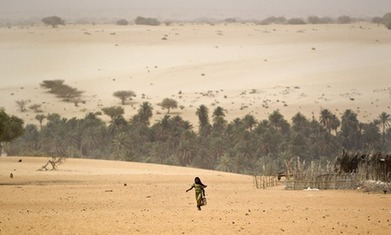When land is degraded, its people and their prospects are degraded too | BioFuels - Agriculture & Oil Trees | Scoop.it