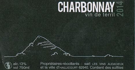 De la mine à la vigne ou quand le terril se fait vignoble | Le Vin et + encore | Scoop.it