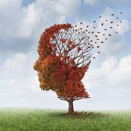 Eating well can slow down Alzheimer's onset - Irish Independent | Alzheimer's Support | Scoop.it
