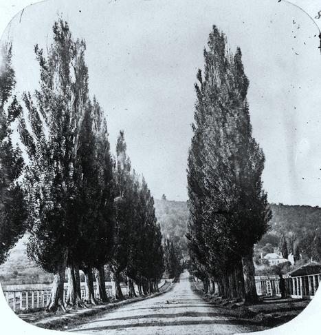 Chemin Mile End, 1859   Photos ancestrales de Montréal   Scoop.it