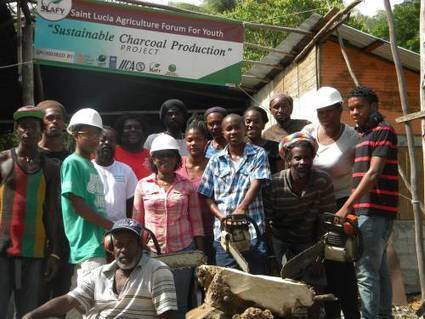 Sustainable charcoal: Is that possible? | Organic Farming | Scoop.it