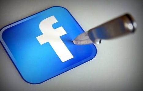 4 Tactics for Surviving Facebook's Algorithm Changes (Infographic)   SM   Scoop.it