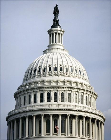 Senate Passes NDAA Amendment on Syria No-Fly Zone -- News ... | The Black Conservative | Scoop.it