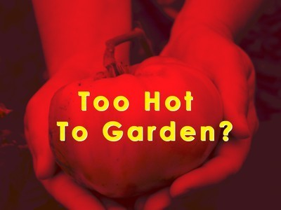 5 Tips For a Bountiful, Water-Saving Vegetable Garden in a Time of Drought | Teaching Technology in the Classroom: Sustainability and water conservation | Scoop.it