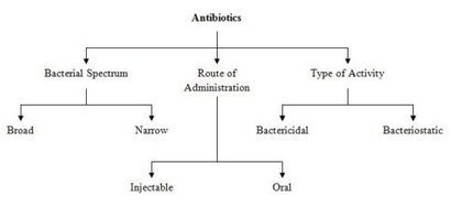 History of Antibiotics - The Discovery by Alexander Fleming | Medical Innovations | Scoop.it