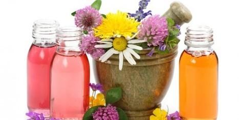 Huile essentielle camomille - guide aromathérapie et Phytothérapie | Guide aromathérapie | Scoop.it