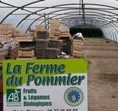 La Ferme du Pommier, AMAP à Lille - Blog Bio, Santé, Beauté   Bio, Santé et Bien-être   Scoop.it