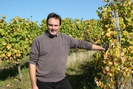 Viticulture : le rebond bergeracois | Hotel in Dordogne Perigord | Scoop.it