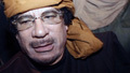 Libyan spokesman: 'We will die for oil' | Human Rights and the Will to be free | Scoop.it