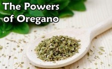 "5 Compounds that Make Oregano a Nutritional Powerhouse (""this is the true spice of life"") 